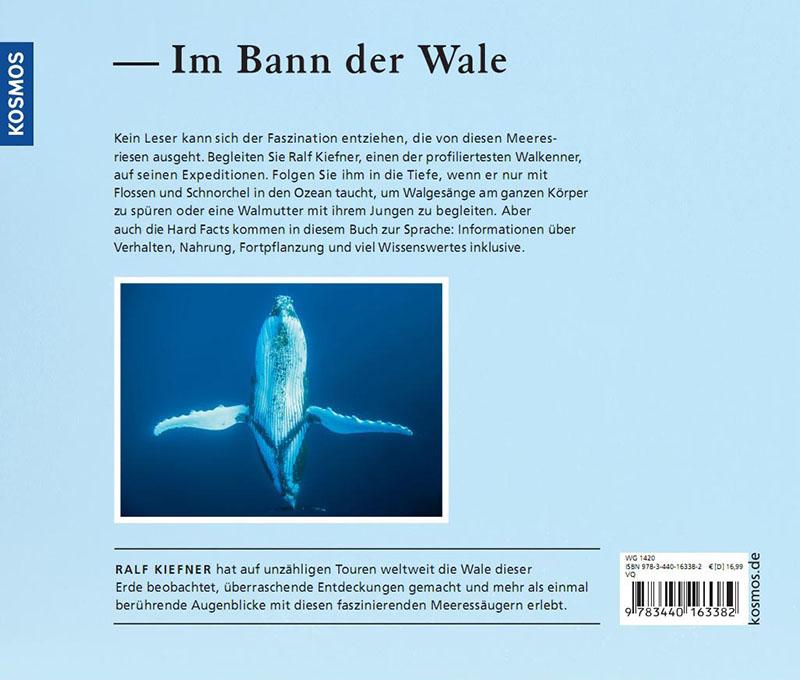 Deinen ersten Wal vergisst Du nie - Buch Rückseite