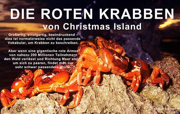 1996 - Rote Krabben-RalfKiefner-deutsch