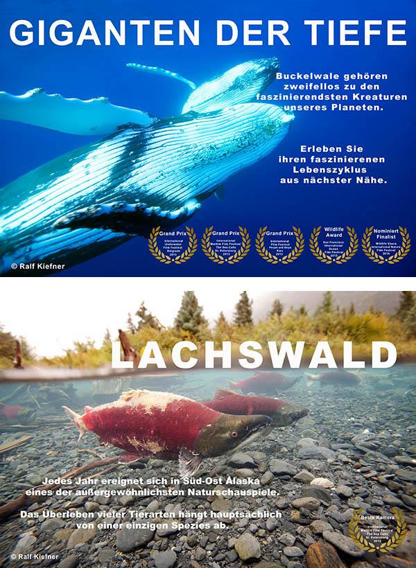 2012-Lachswald-Giganten-RalfKiefner