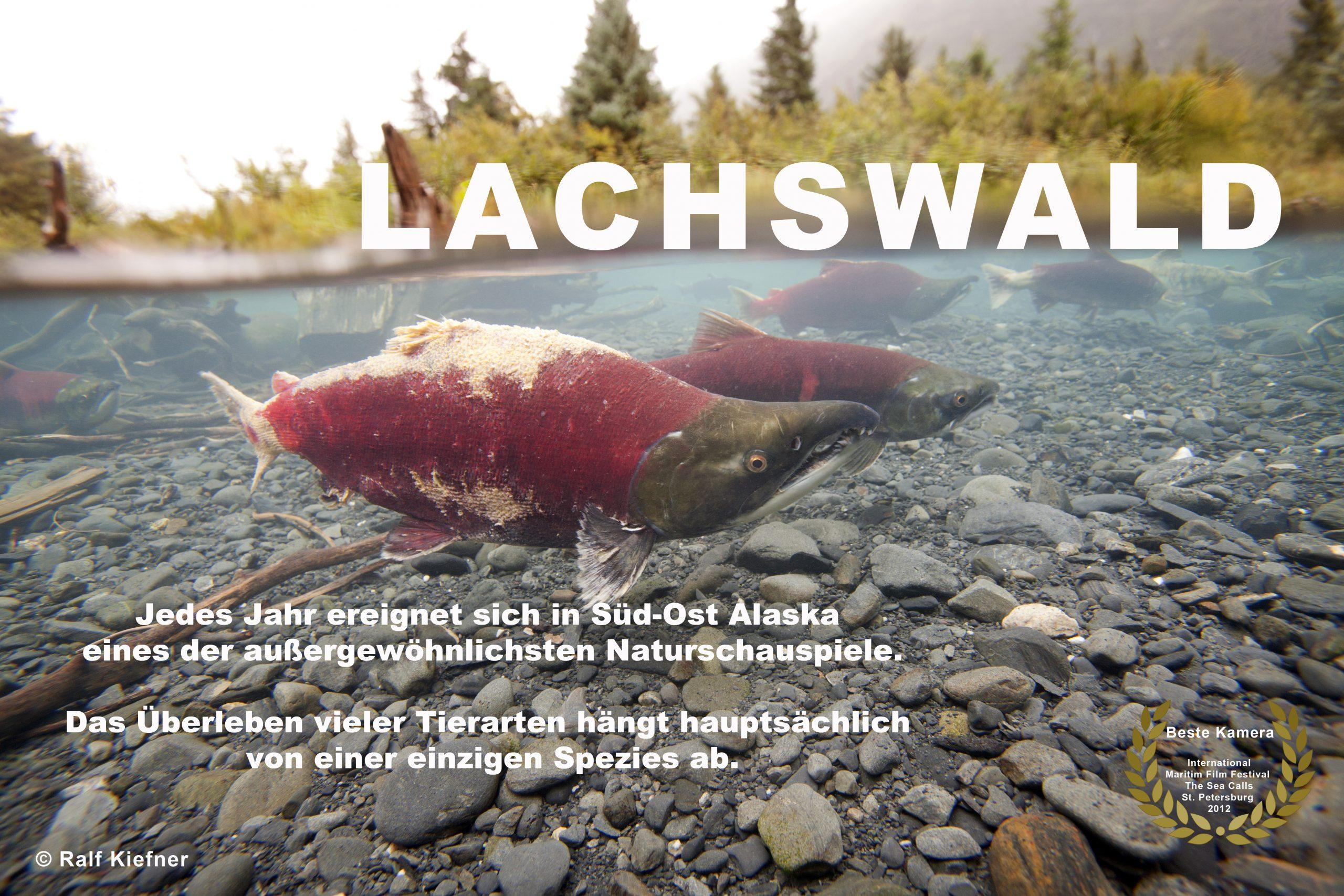 2012 - Lachswald-RalfKiefner-deutsch