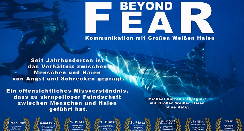 2004 - Beyond Fear - Ralf Kiefner