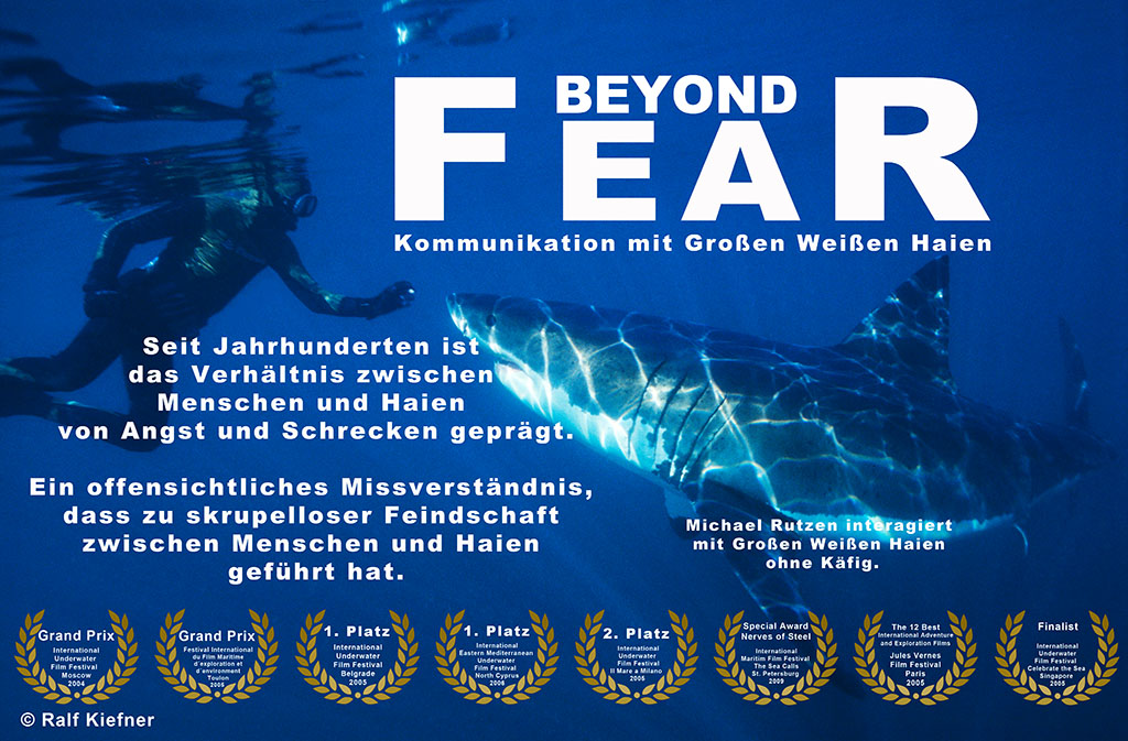 2004 - Beyond Fear - Ralf Kiefner