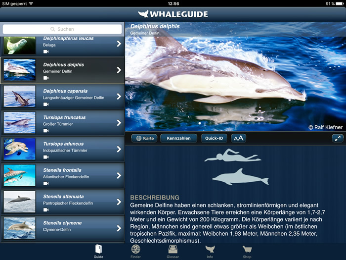Screenshot Whaleguide App