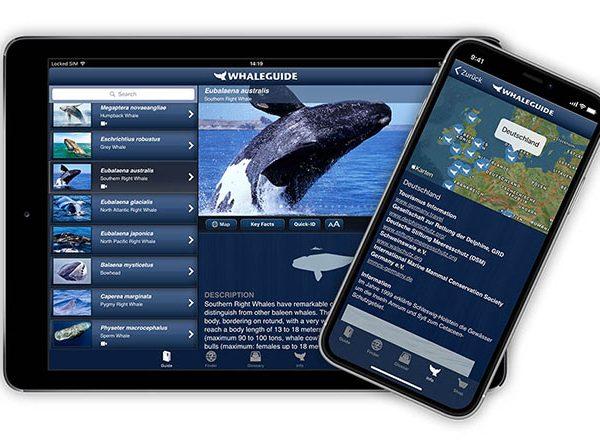Whaleguide App auf Handy und Tablet