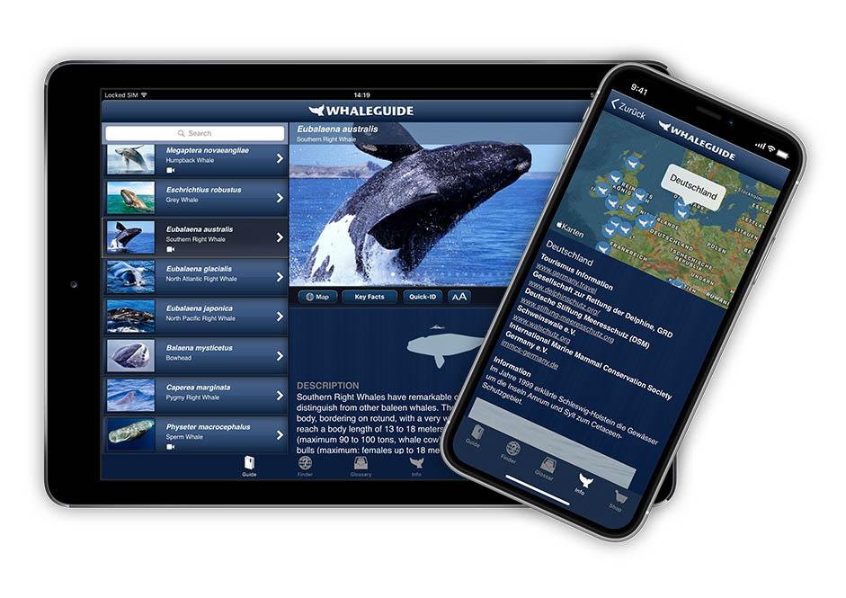 Whaleguide App - Produktfoto