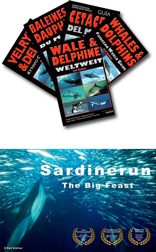 "Book ""Whales and Dolphins worldwide"" - Film Sardinerun Awards"