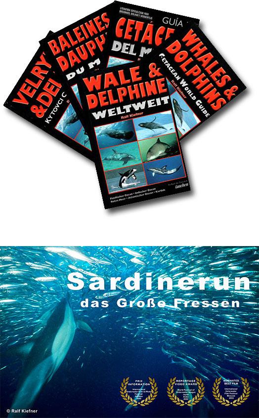 """Buch """"Wale und Delfine weltweit"""" - Film Sardinerun Auszeichnungen"""