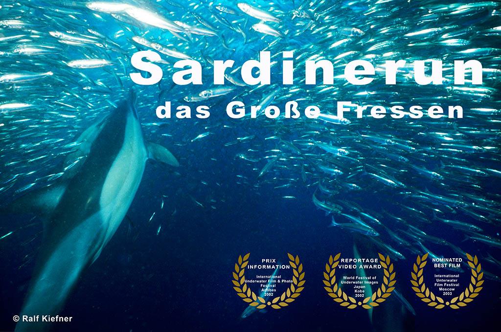 Sardinerun VOX Ralf Kiefner